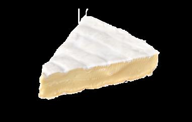 Brie Fleur de Pré 60+